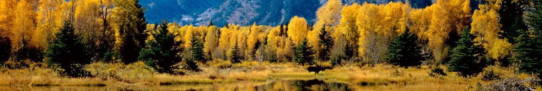 autunno-in-montagna